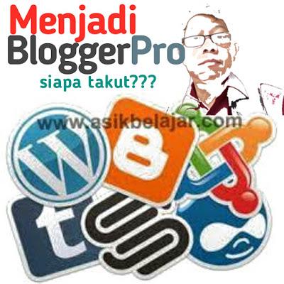 Alasan Blogger Bisa Dijadikan Profes